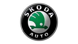 Skoda Remapping Stats
